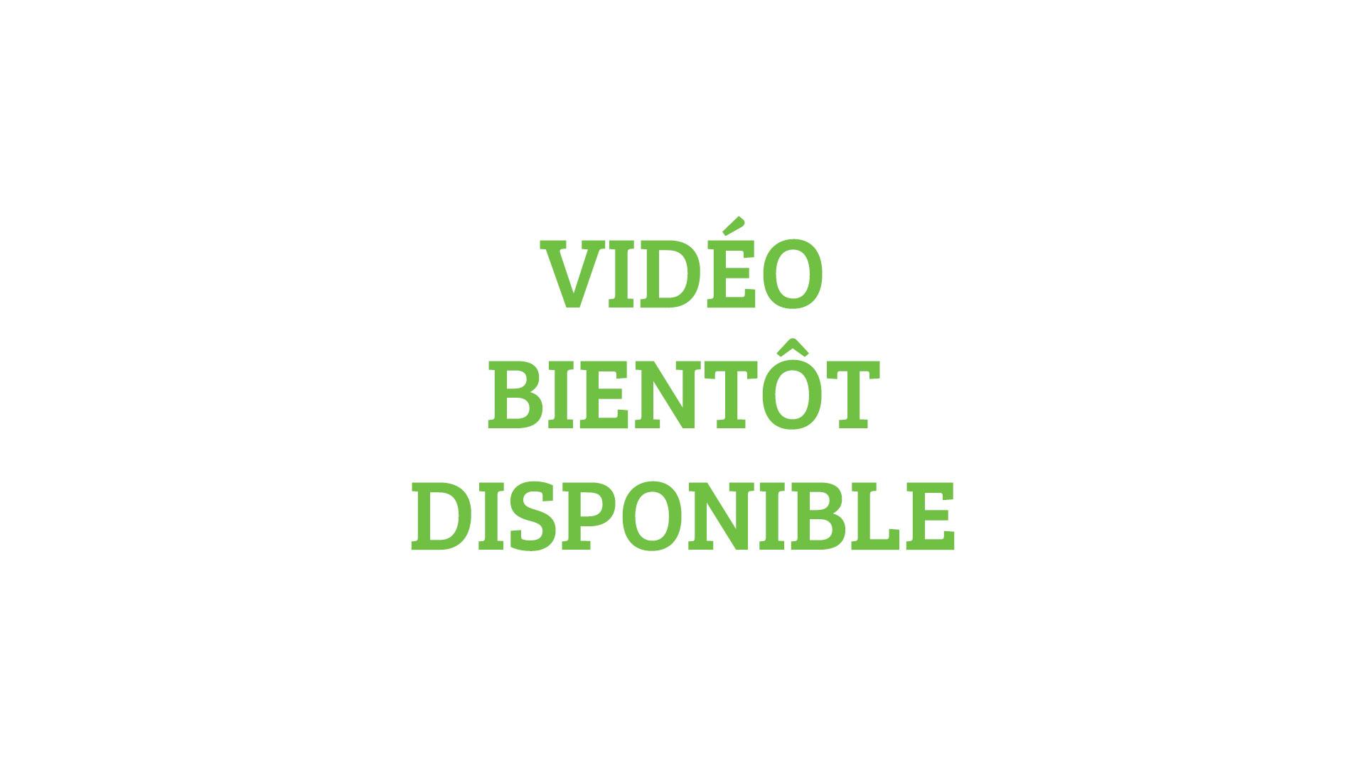Vidéo bientôt disponible